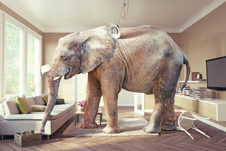 Big elephant and the case of beer  in the living room. 3d concept Фото со стока - 56812219