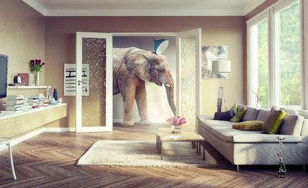 アパートの部屋を歩く大きなゾウ。3 d コンセプト