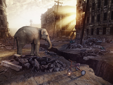 destructive: an elephant and the ruins of a city with a crack in the street. (photo combination concept)