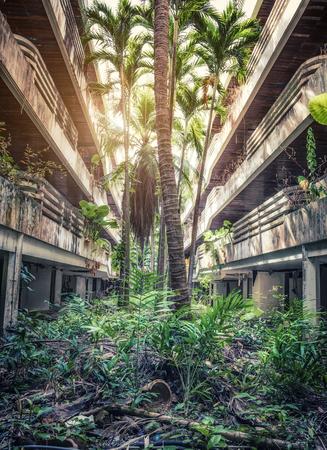정글이 파괴 된 건물을 파괴했습니다. 사진.