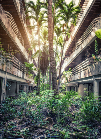 Destroyed Jungle overgrown buildings.  photo. Stock Photo