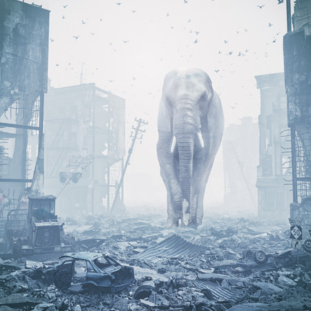 giant elephant in destroyed city. creative concept. Media mixed. Noise added Stock Photo