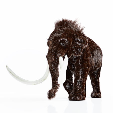 El mamut aislado. Representación 3D Foto de archivo - 80700438