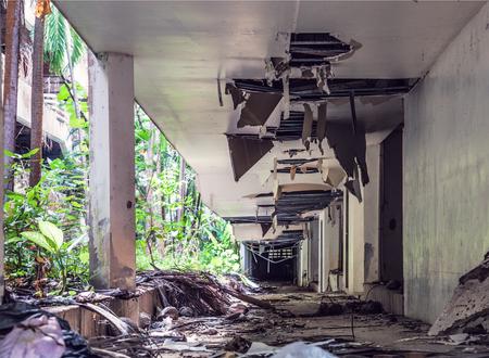 Vernietigde wildernis overgroeide gebouwen na 2004 tsunami. Thailand. Phuket