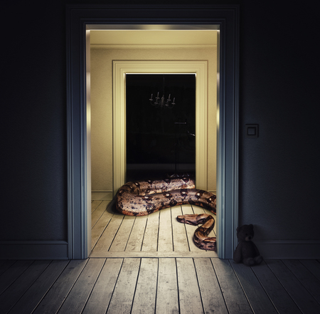 Snake in the room. Media mixed concept
