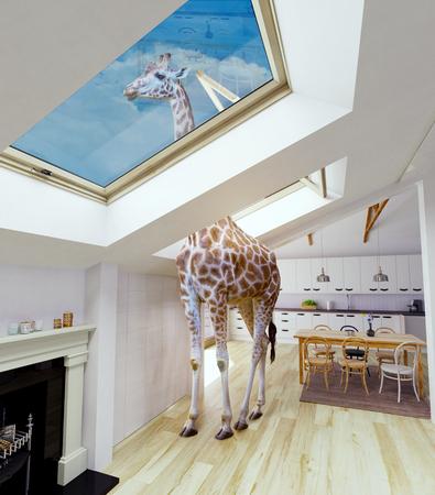 Giraf kijkt uit op het zolderraam. Media gemengd concept. Stockfoto - 89935962