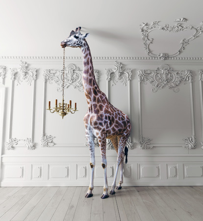 the giraffe hold the chandelier in the luxury decorated interior Stock Photo
