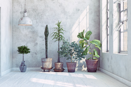 vintage wall with plants set. 3d rendering concept Stock Photo