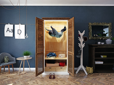 Sloth in the home closet.