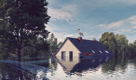 The house and the tree flooding the water. 3d rendering concept Stok Fotoğraf