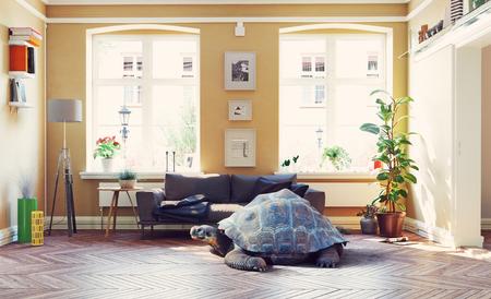 Giant turtle in the living room. Standard-Bild - 118191476