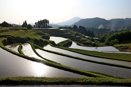terracing: nice view of rice field terraces in a little countryside farming town Stock Photo