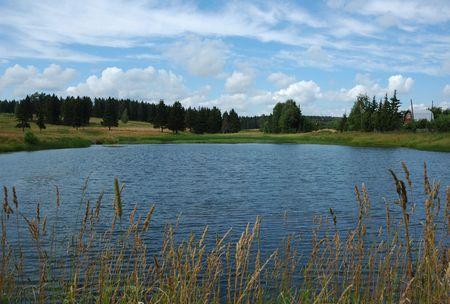 Little forest lake near village Stock Photo - 2688071