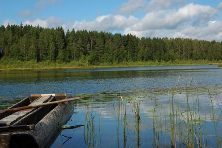 dugout: Little forest lake in summer, old dug-out, reflections in water