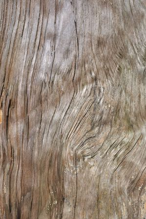 Close up of old weathered wooden background