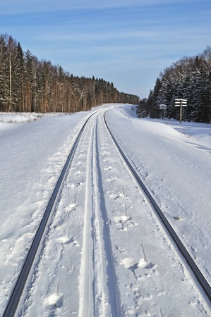 Ski track between snowy rails in winter forest Stock Photo - 8928503