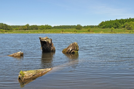 View of lake with old stumps on foreground Stock Photo - 9788332