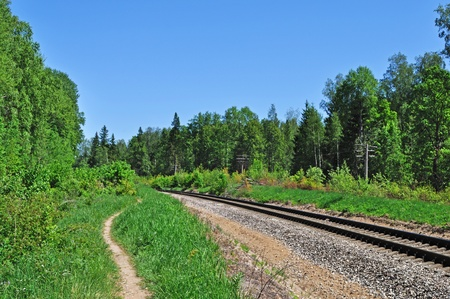 forest railroad: Foot path and railroad track in forest