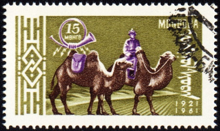 camel post: MONGOLIA - CIRCA 1961: stamp printed in Mongolia, shows cameleer with two camels, series, circa 1961 Stock Photo