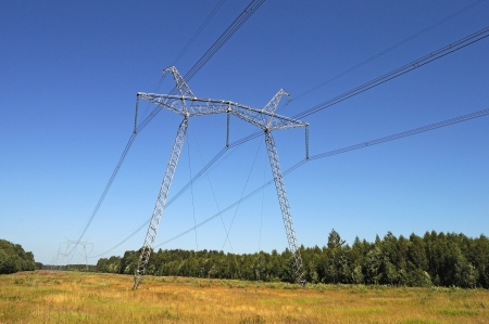 The high-voltage line running through the woods photo