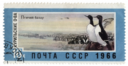 far east: USSR - CIRCA 1966  A post stamp printed in the USSR shows rookery in the Kuril Islands, series  Landscapes of the Far East , circa 1966 Stock Photo