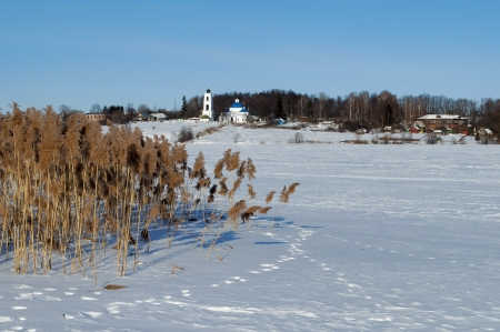 frozen river:  Winter rural landscape with frozen river and dry reeds on the shore, sunny day
