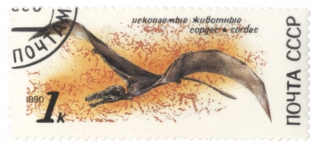 saurian: USSR - CIRCA 1990  stamp printed in USSR shows dinosaur Sordes, series zoolith, circa 1990