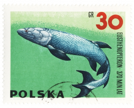 POLAND - CIRCA 1966  stamp printed in Poland shows a prehistoric fish Eusthenopteron, series  Zoolith , circa 1966 photo