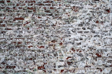 Fragment of old brick wall with peeling plaster photo