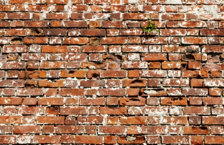 Fragment of weathered red brick wall background photo