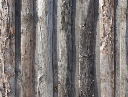 Fragment of natural rough wooden boards background photo