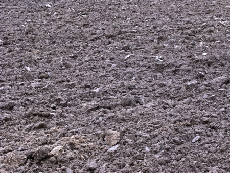 arable: Close up of rustic arable land