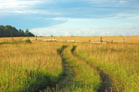 earth road: Vista del pascolo nel nord del villaggio russo con la strada di terra Archivio Fotografico