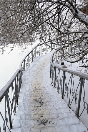 handrails: Metal staircase with handrails under the snow-covered tree in wintertime