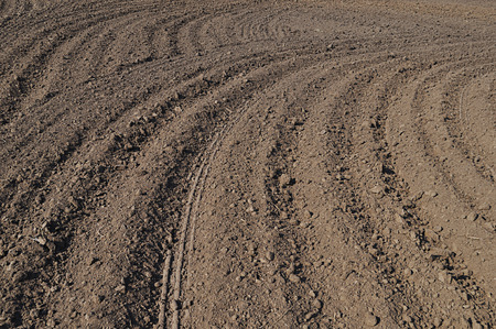arable: Natural background with arable land Stock Photo
