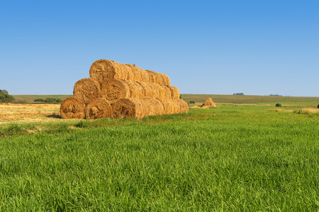 Summer country landscape with green meadow and mow of bales of hay Stock Photo