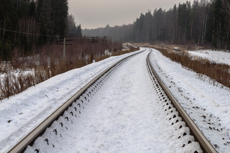 forest railway: Snow-covered railway line through the foggy winter forest