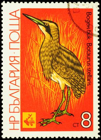 bittern: MOSCOW, RUSSIA - FEBRUARY 20, 2016: A stamp printed in Bulgaria shows Great bittern (Botaurus stellaris), series Birds - EXPO `81 Plovdiv, circa 1981 Editorial