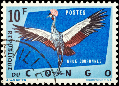 crowned crane: MOSCOW, RUSSIA - FEBRUARY 20, 2016: A stamp printed in Congo shows Crowned crane (Balearica pavonina), series Protected Birds, circa 1963