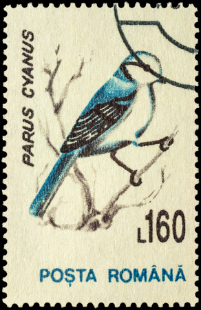 philatelic: MOSCOW, RUSSIA - FEBRUARY 20, 2016: A stamp printed in Romania shows bird azure tit (Parus cyanus), series Birds, circa 1993 Editorial
