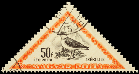 philatelic: MOSCOW, RUSSIA - FEBRUARY 29, 2016: A stamp printed in Hungary shows bird Kentish plover (Charadrius alexandrinus), series Birds, circa 1952