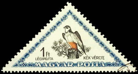 falco: MOSCOW, RUSSIA - FEBRUARY 29, 2016: A stamp printed in Hungary shows bird red-footed falcon (Falco vespertinus), series Birds, circa 1952 Editorial