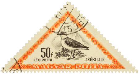 postal: MOSCOW, RUSSIA - FEBRUARY 29, 2016: A stamp printed in Hungary shows bird Kentish plover (Charadrius alexandrinus), series Birds, circa 1952