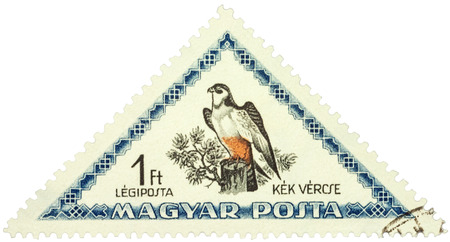 vermin: MOSCOW, RUSSIA - FEBRUARY 29, 2016: A stamp printed in Hungary shows bird red-footed falcon (Falco vespertinus), series Birds, circa 1952 Editorial
