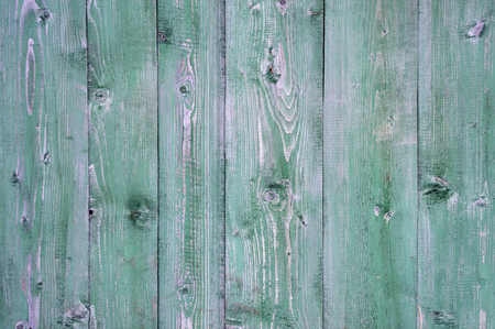 scratchy: Texture of old weathered green wooden rustic fence