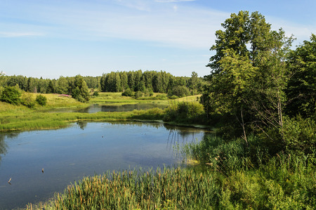squashy: Country landscape with small forest lake in summer time