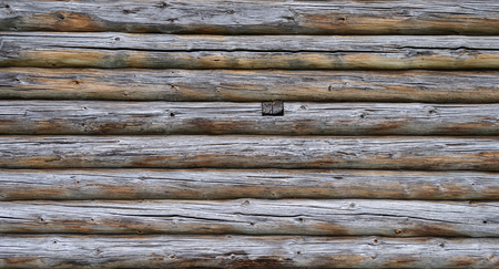log wall: Close up of old unpainted weathered log wall background