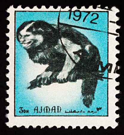 Moscow, Russia - February 03, 2018: A stamp printed in Ajman shows monkey sitting on tree branch, series Animals - Mammals, circa 1972