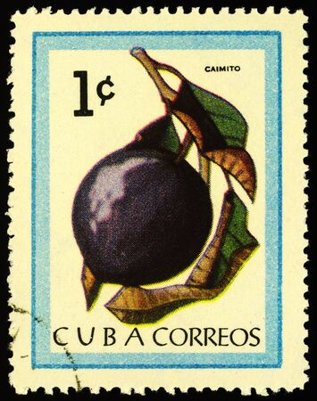 Moscow, Russia - January 19, 2020: stamp printed in Cuba shows cainito, or caimito, or tar apple, or star apple, or abiaba, or estrella (Chrysophyllum cainito), series