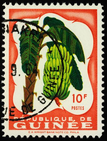 Moscow, Russia - January 07, 2020: stamp printed in Guinea shows banana (Musa acuminata), series Fruits in Natural Colors, circa 1959